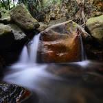 20131209  淺探田灣山、奇力山南脊 Tin Wan Shan & Mount Kellett South Ridge