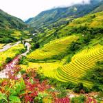 Discover the Red Dao ethnicity culture in Ta Phin Village Sapa
