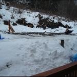 snow day 008.JPG
