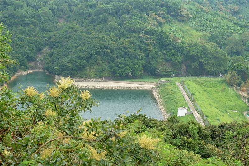 Pokfulam Reservoir 下望薄扶林水塘