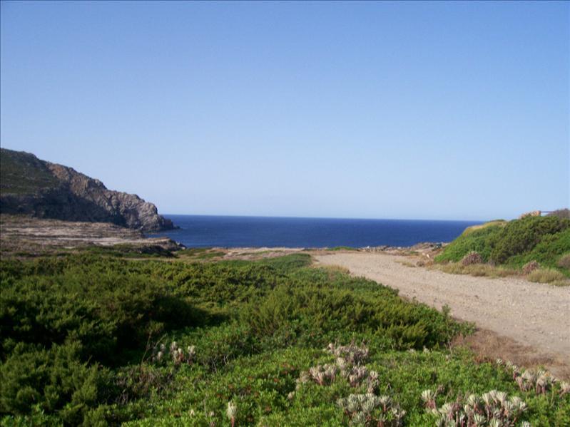 Stintino Cape Falcone