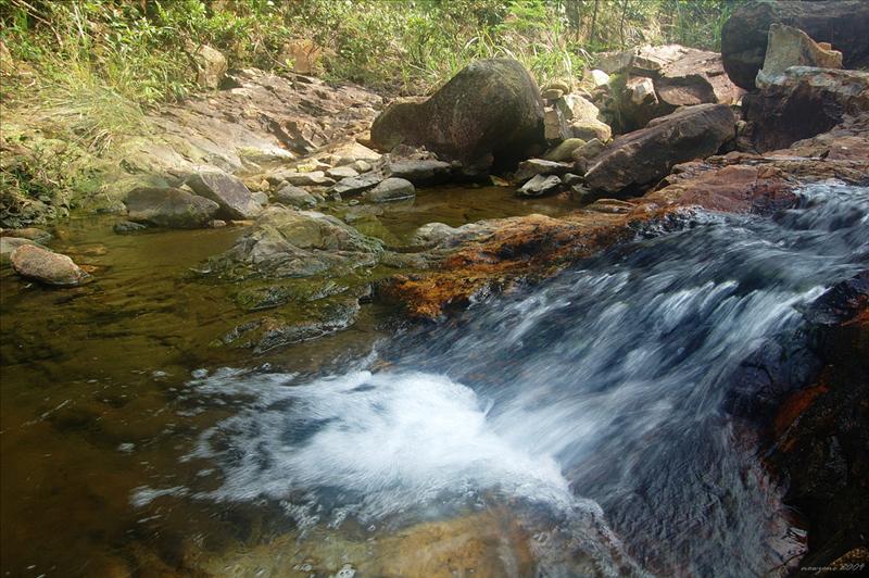 Sheung Tam Stream 雙潭石澗