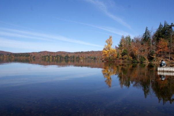 I simply love Fall Foliage - if u r nice, I will invite u here next time.