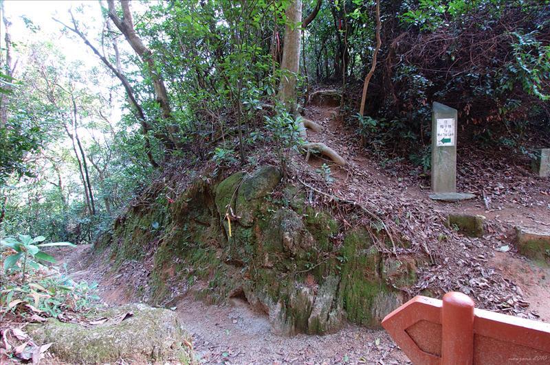 女婆山坳上石芽西北脊 Nui Po Shan Au