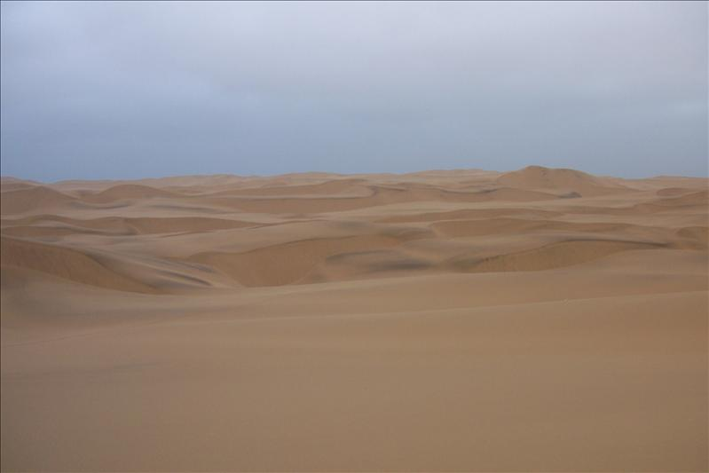 Sand dunes / dunes de sable