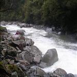 Kellys Creek