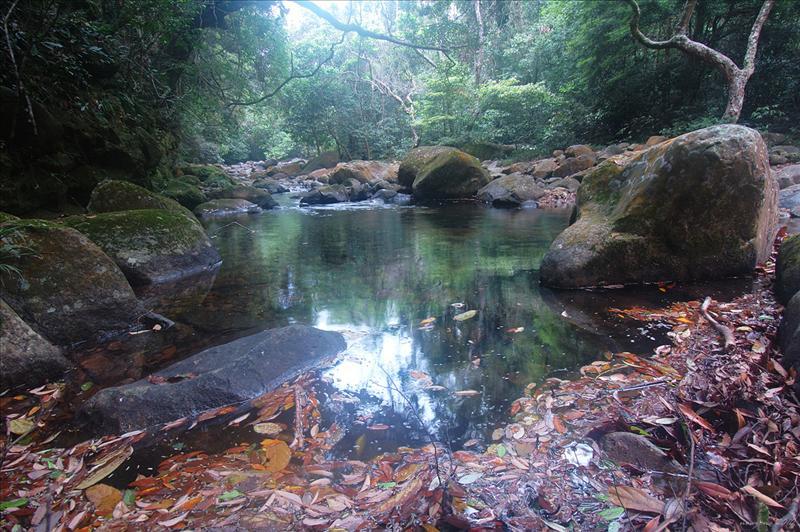 大城石澗 Tai Shing Stream