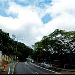 南風道 Nam Fung Road