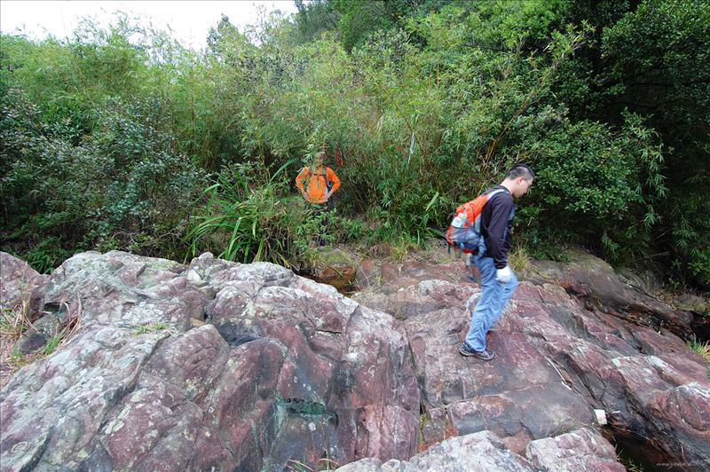 黃竹涌的中游石澗