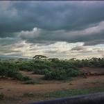 Taita Hills.jpg