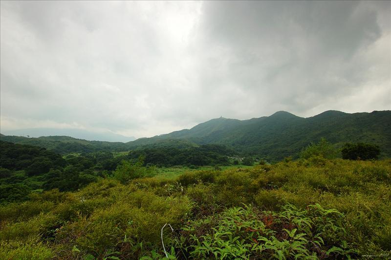 西面的九龍坑山