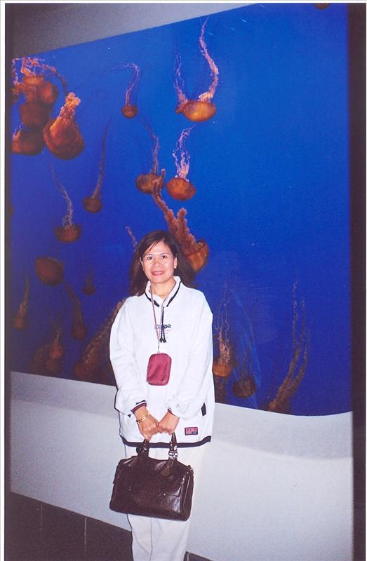 Monterey Oceanarium