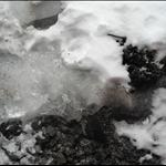 snow day 015.JPG