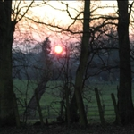 countryside fo York