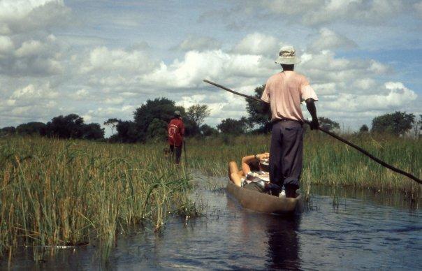 OKAVANGO DELTA, BOTSWANA - MAR
