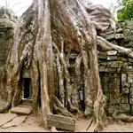 Cambodia - 016.jpg
