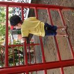 SAM_0264.JPG