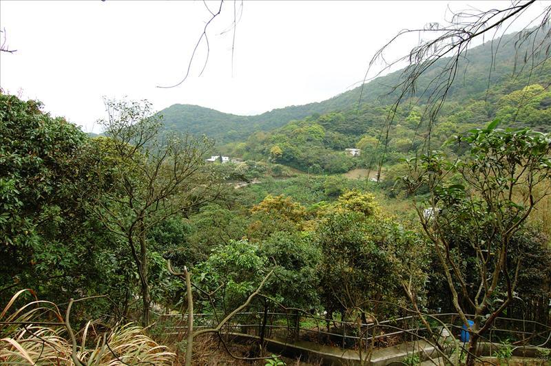 左側的觀音山村