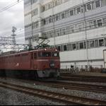 20100217-004.JPG