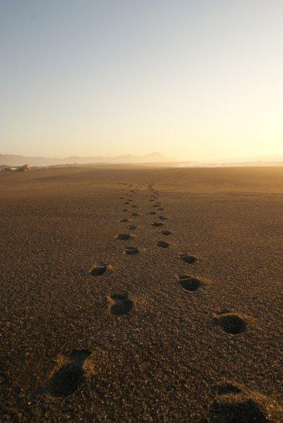 God's steps
