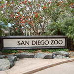 San Diego Zoo 2011