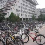 北方很多單車