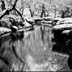 01 Jan '10 - Kanazawa