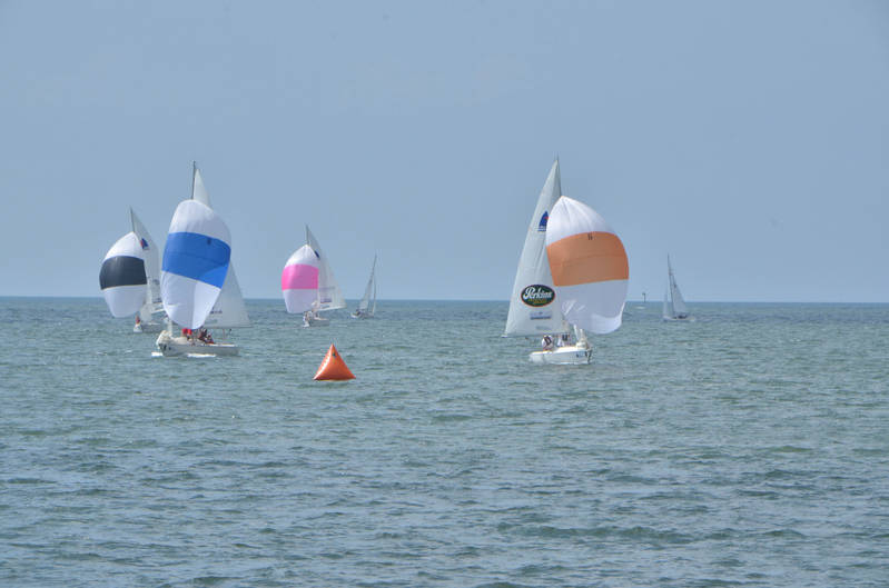 St Petersburg FL Races and Harbor 4-19-21-12 047.jpg