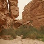 20120420-19 - Desert Camping