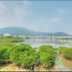 20071028 Razor Hill (Che Kwu Shan) 鷓鴣山