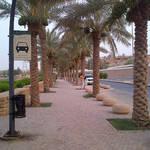Riyadh-20120621-00088.jpg