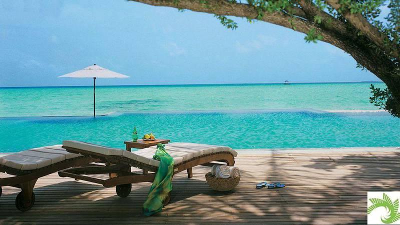 beach-loungers-infinity-pool-ocean-view.jpg