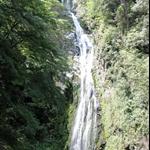 2010/05/15~16合歡山梨山武陵農場登山旅遊