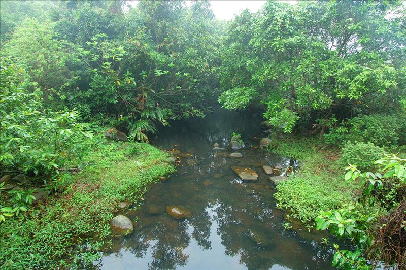 橋下坑水清澈