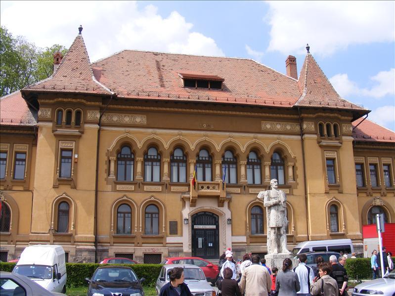 County Library George Baritiu