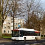 HTMbuzz