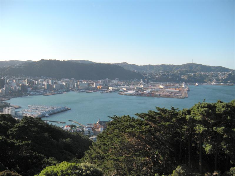View of Wellington from Victoria Hill