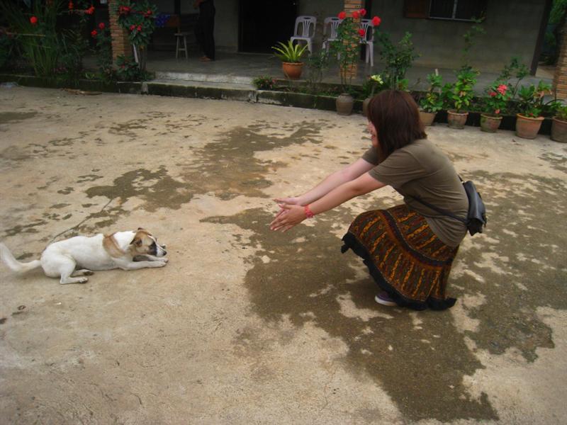 她是動物慈愛家~榮楨