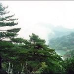 1 黃山 (26).jpg