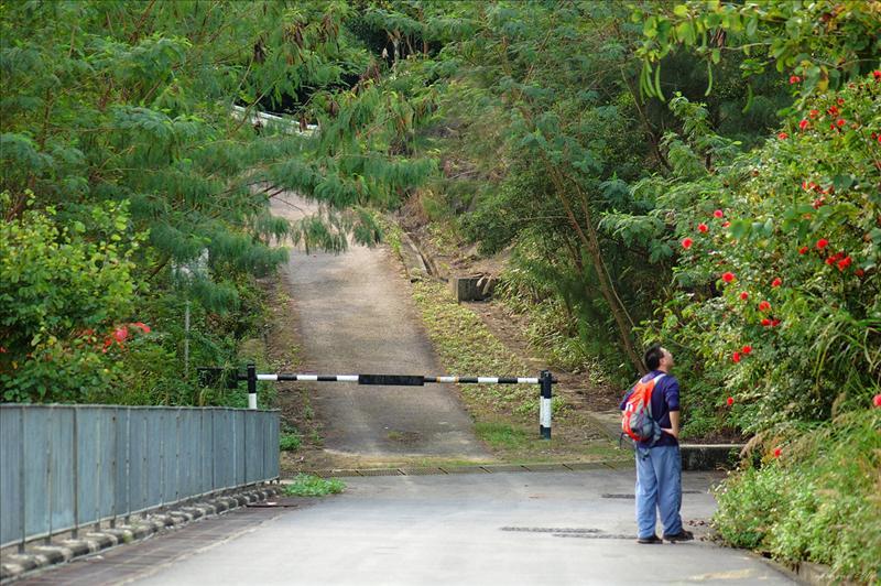 過車路的大閘向上走
