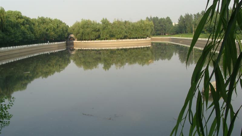 戚城公园水池