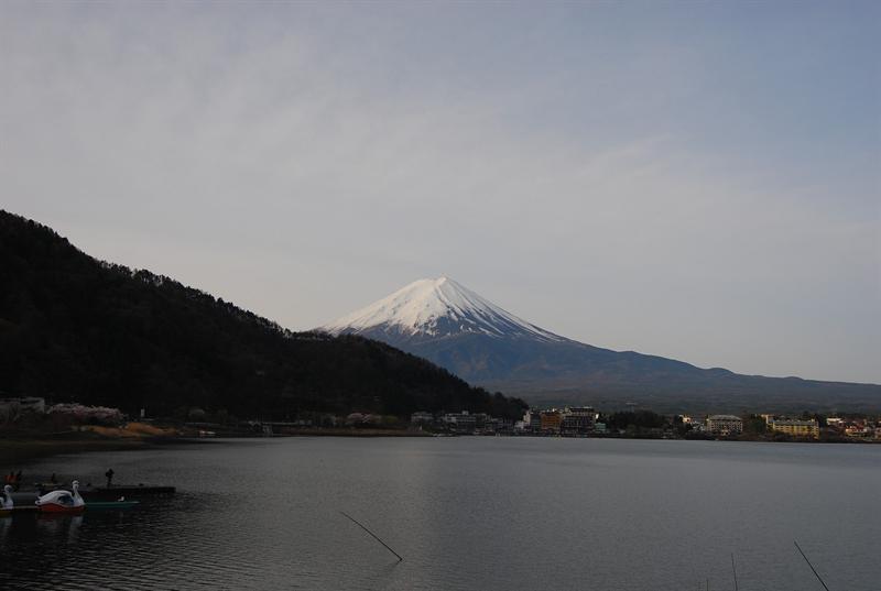 住在河口湖北岸的優點就是可以看見富士山的倒影