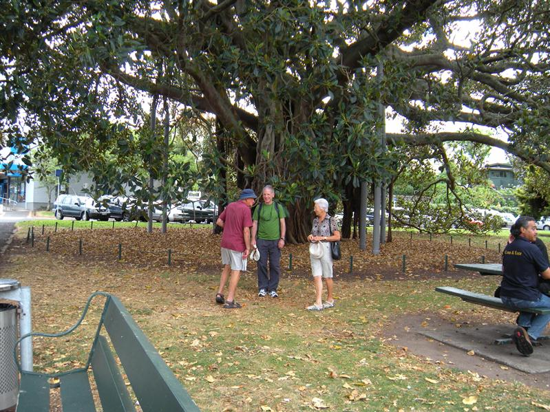 Pete & Margaret by the famous fig tree at Davenport