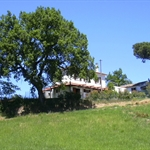 Agriturismo Le Cicale - guest house