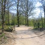 Warande Park Spring