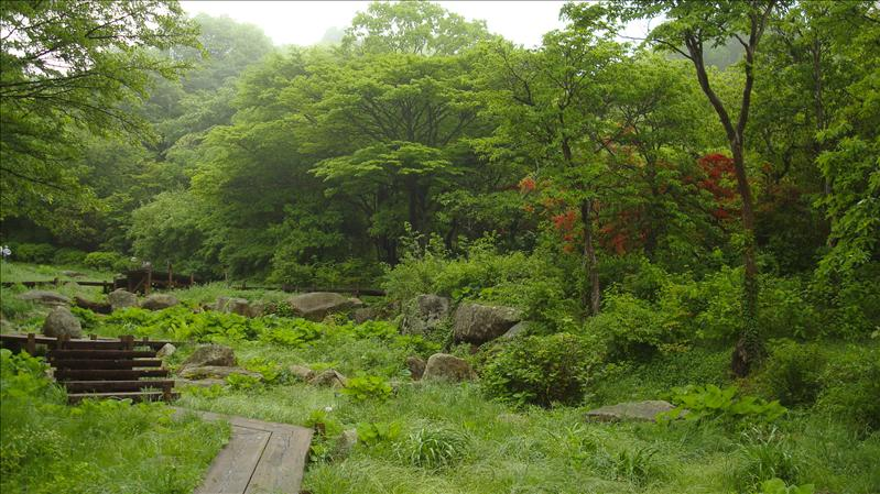Alpine Botanical Garden