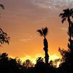 Scottsdale Sonnenuntergang