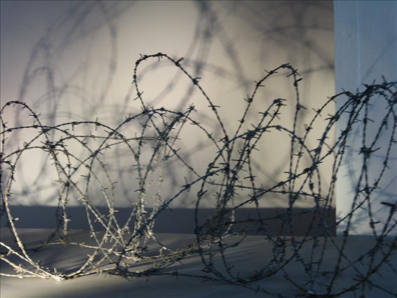 Original barbed wire, now a lighting display