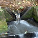 DSC_9532 V形缺口的水務設施.jpg