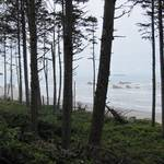Ruby Beach I, Olympic National Park
